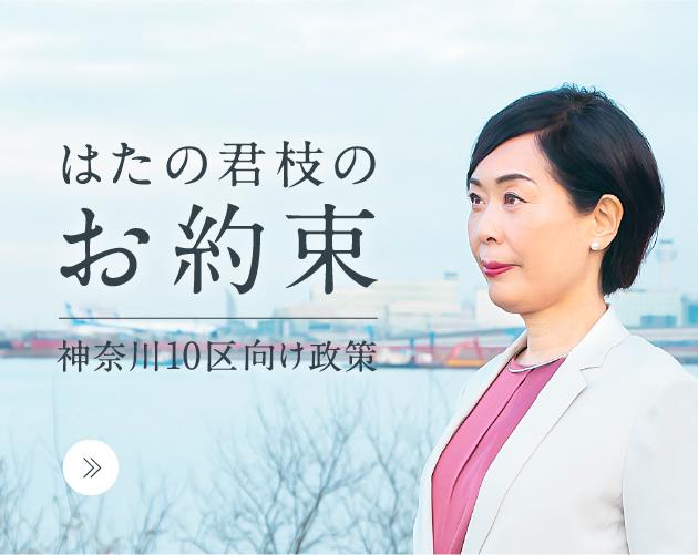 はたの君枝のお約束 神奈川10区向け政策