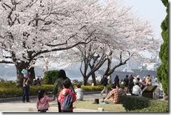 24日横須賀①